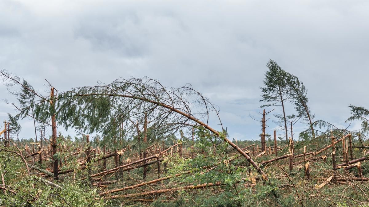 Orkan Ksawery uderzył w Polskę. Dwie osoby zginęły, 840 tys. nie ma prądu. Czy dziś też będzie tak niebezpiecznie?