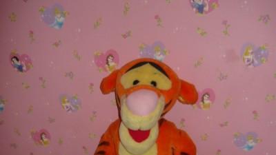 bajkowy duzy tygrysek