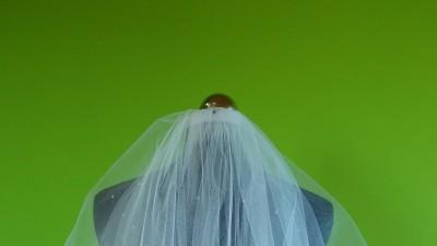Bolerka i welony ślubne