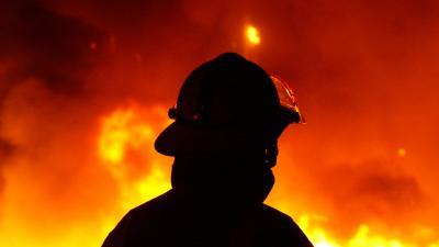 Co za bohater! Strażak ratuje psa z pożaru i przeprowadza reanimację