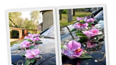 dekoracja slubna na samochód różowy storczyk