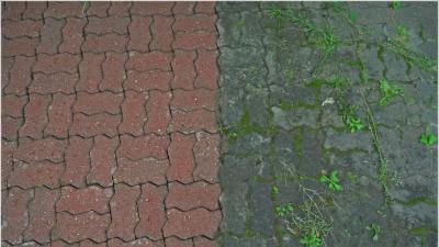 Drogie polki oferuję czyszczenie kostki brukowej dla Warszawy i okolic