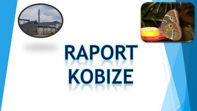 Jak wypełnić Raport do Kobize, do kiedy i jak złożyć raport do bazy emisji ?