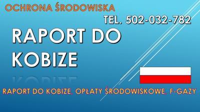 Kobize, cena za raport, tel. 502-032-782 Toruń, Zabrze, Bielsko-Biała, Olsztyn, Rzeszów, Ruda Śląska, Rybnik, Wałbrzych, Tychy, 2017, 2018