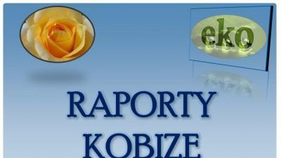 Kobize raport, tel 502-032-782, rejetracja firmy, zakładu w bazie kobize