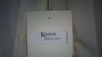 Koszula KASTOR