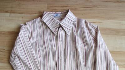 Koszula w stanie idealnym