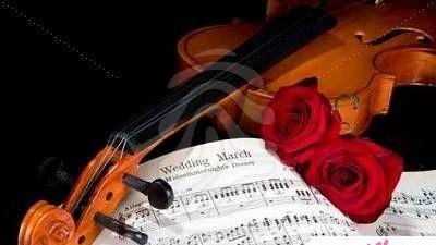 Muzyk - Profesjonalne skrzypce na slubie - piekno i klasa