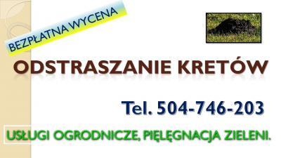 Odstraszanie kretów, cena, tel. 504-746-203, Zwalczanie, usuwanie, wypłaszanie, tępienie, gazowanie, fumigacja, cennik  Zwalczanie kretów Wrocław, usługi zwalczania kretów,Wrocław, skuteczne metody