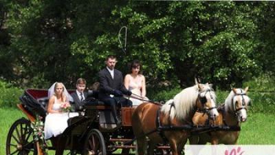Powozem do ślubu - Poznań bryczką do ślubu