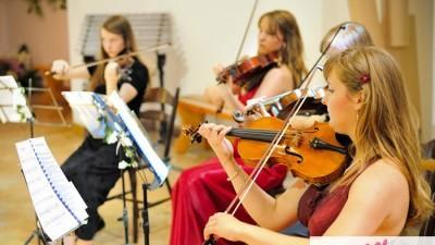 Profesjonalna oprawa muzyczna-kwartet, trio, duet