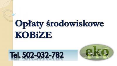 Raport do Kobize , cena tel. 502-032-782. Olsztyn, Rzeszów, Ruda Śląska, Rybnik, Wałbrzych, Tychy, Dąbrowa Górnicza, Płock, Opole, Elbląg, Włocławek, Chorzów, Tarnów, Zielona Góra, Koszalin, Legnica, Kalisz, Grudziądz,  Słupsk, 2017, 2018, 2019.