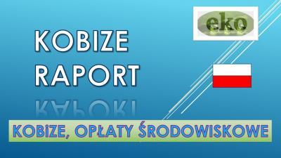 Raport do Kobize, Warszawa, Łódź, Kraków, Wrocław, Poznań, Gdańsk, Szczecin, Bydgoszcz, Lublin, Katowice, Białystok, Częstochowa, 2017,2018