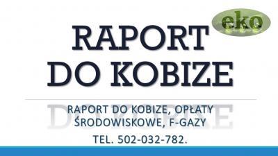 Raportowanie do Kobize, 2017, 2018, cena,, Lublin, Katowice, Białystok, Częstochowa, Gdynia, Sosnowiec, Radom, Kielce, Gliwice, Bytom