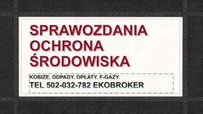Raportowanie do Kobize 2017,2018, cena za raport, Warszawa, Łódź, Kraków, Wrocław, Poznań, Gdańsk, Szczecin, Bydgoszcz