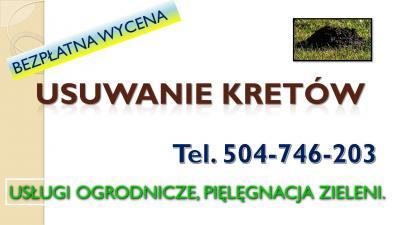 Skuteczne zwalczanie kretów, nornic i karczowników, tel. 504-746-203. Zwalczanie kretów, cennik. Usuwanie, wypłaszanie, tępienie, gazowanie, fumigacja. Skuteczna metoda na pozbycie się kreta.Usługa, sposoby zwalczanie, Wrocław.