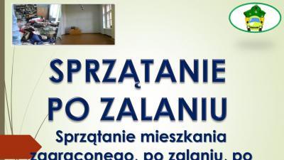 Sprzątanie specjalistyczne, cennik, tel. 504-746-203 Wrocław, usługi.Sprzątanie i po awarii hydraulicznej, kanalizacji czy pęknięciu rury. Dezynfekcja pomieszczenia po szambie, fekaliach. Sprzątanie po bezdomnych, zbieraczach.