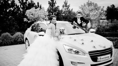 Sprzedam suknię ślubną DEMETRIOS 2829