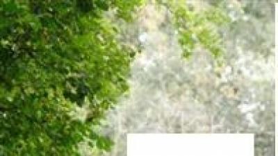 Sprzedam suknię ślubną Kivor - Herm's kolekcja 2007