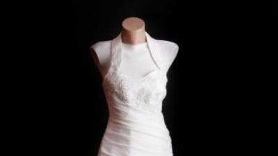 Suknia ślubna Dżamilla Collection Clamour 2010