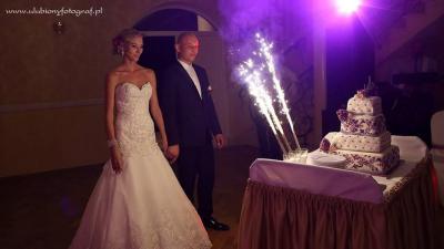Suknia ślubna Mon Cheri DAVID TUTERA 115247 rozm.36