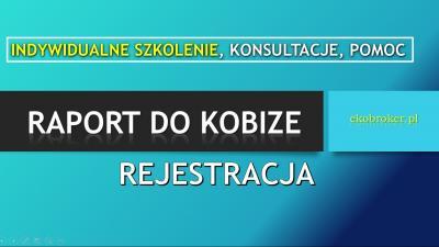 Szkolenie Raport do Kobize, Ćwiczenia, Warsztaty, cena , sprawozdanie. Warszawa, Łódź, Kraków, Wrocław, Poznań, Gdańsk, Szczecin, Bydgoszcz, Lublin, Katowice, Białystok, Częstochowa