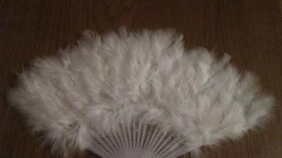 Wachlarz pióra ślub biały