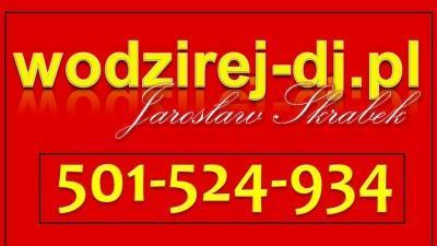 wodzirej i Dj. Jarosław Skrabek + Biesiada z akordeonem