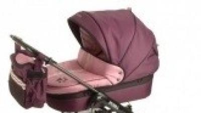 Wózek Deltim Puma - fioletowy