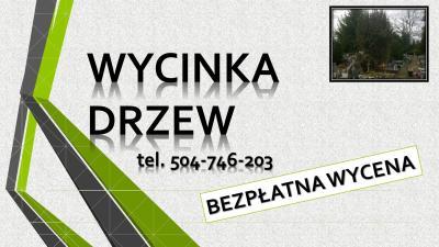 Wycięcie drzewa na cmentarzu Wrocław, tel. 504-746-203, cena, wycinka drzew,