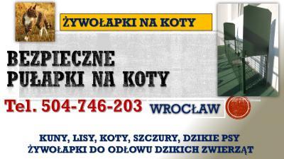 Wyłapywanie bezdomnych zwierząt, kotów, tel 504-746-203. Wrocław. Odławianie.  Odławianie bezpańskich zwierząt, koty, psy. Firma oferuje usługi zwalczania dzikich kotów, kun, lisów. Do złapania bezdomnego kota służą bezpieczne żywołapki.