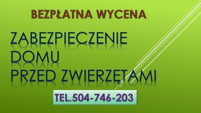 Zabezpieczenie domu przed kuną, tel. 504-746-203, Wrocław, płoszenie kuny, odławanianie, płoszenie, odstraszanie, zwalczanie, szkody po zwierzętach