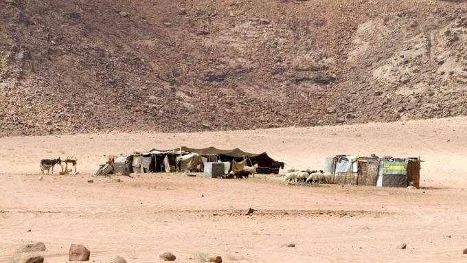 Beduińska wioska na pustynii