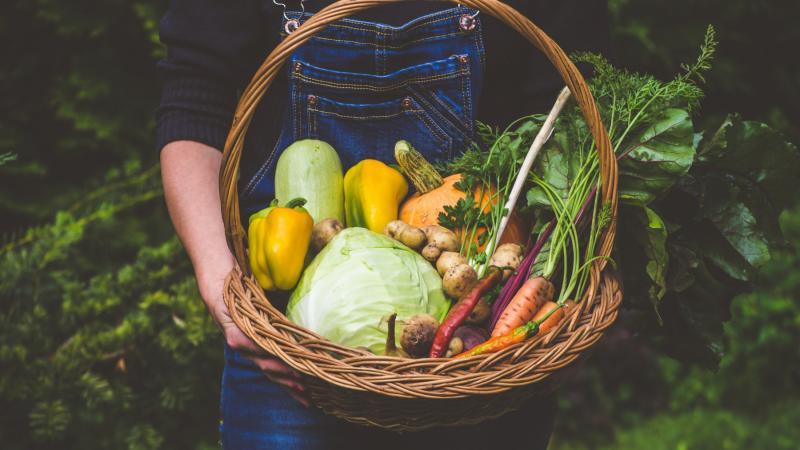 Ludzie chudną na niej nawet 20 kg! Czy dieta warzywno-owocowa dr Dąbrowskiej to najlepsza metoda na detoks?