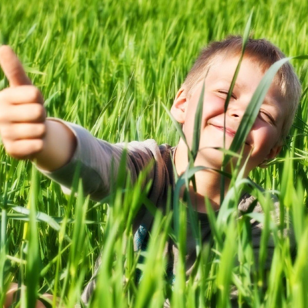 Plamy Z Trawy 7 Sposobow Na To By Skutecznie Usunac Plamy Z Trawy Porady Domowe Polki Pl