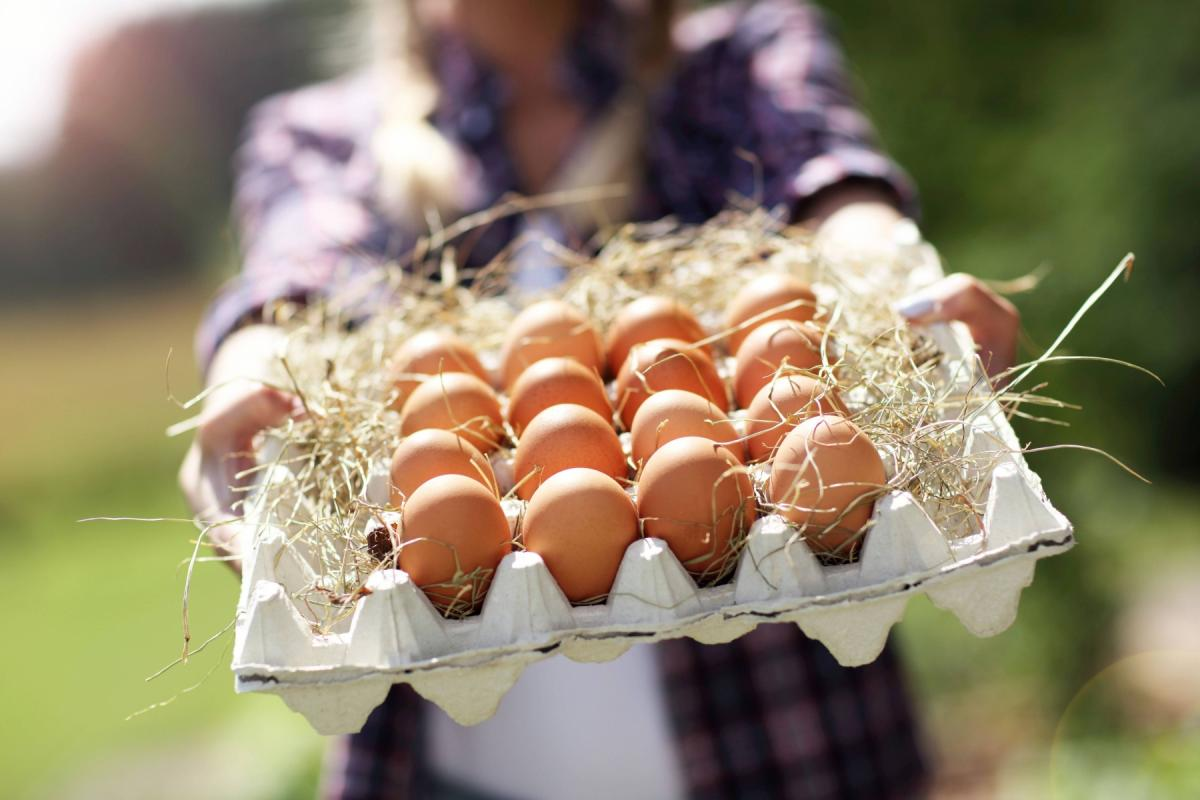 Jajka w opakowaniu, w wytłoczce