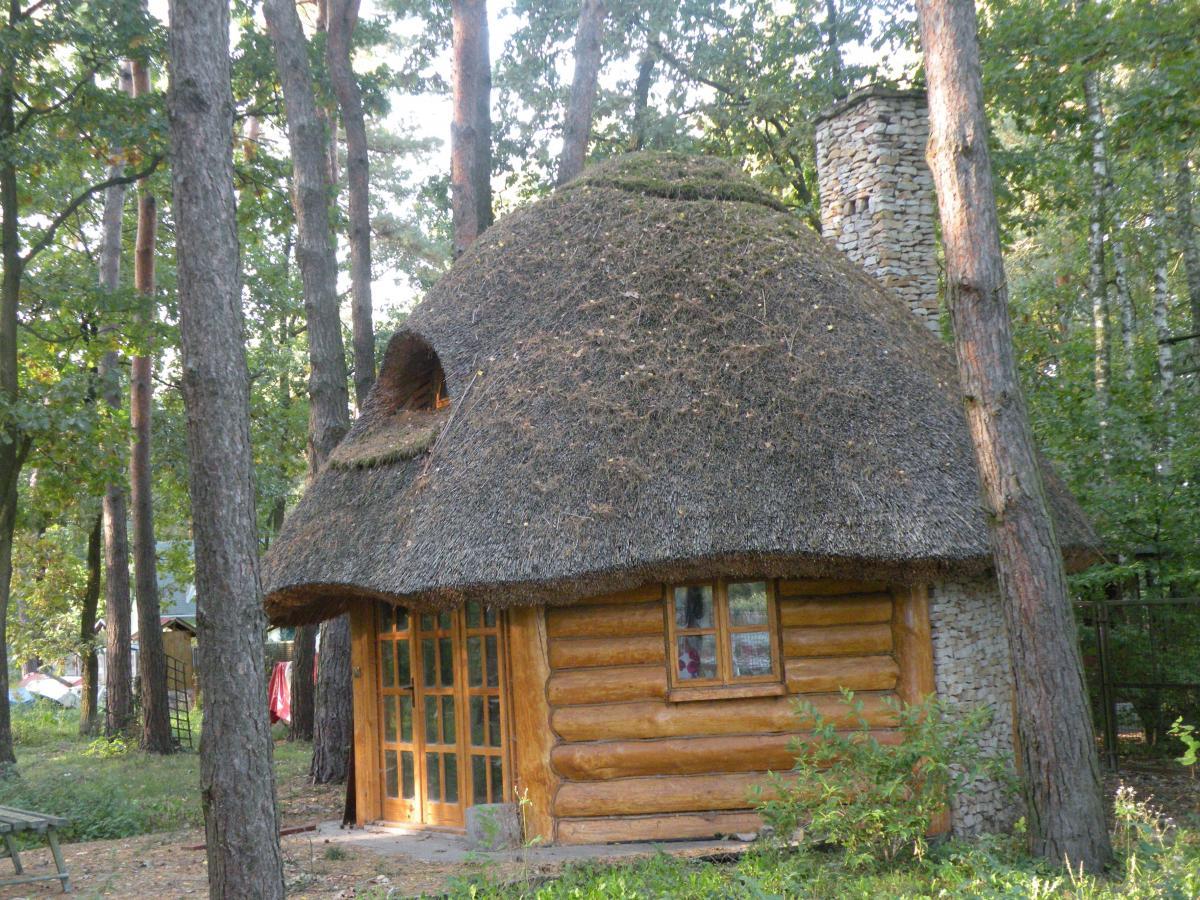 Altana ogrodowa - altana z bali