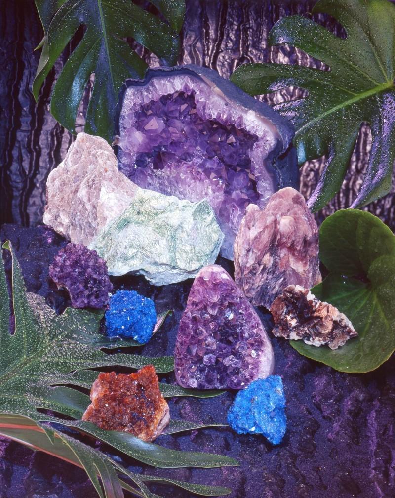 Bijou Brigitte kolekcja wiosna-lato 2009 - zdjęcie