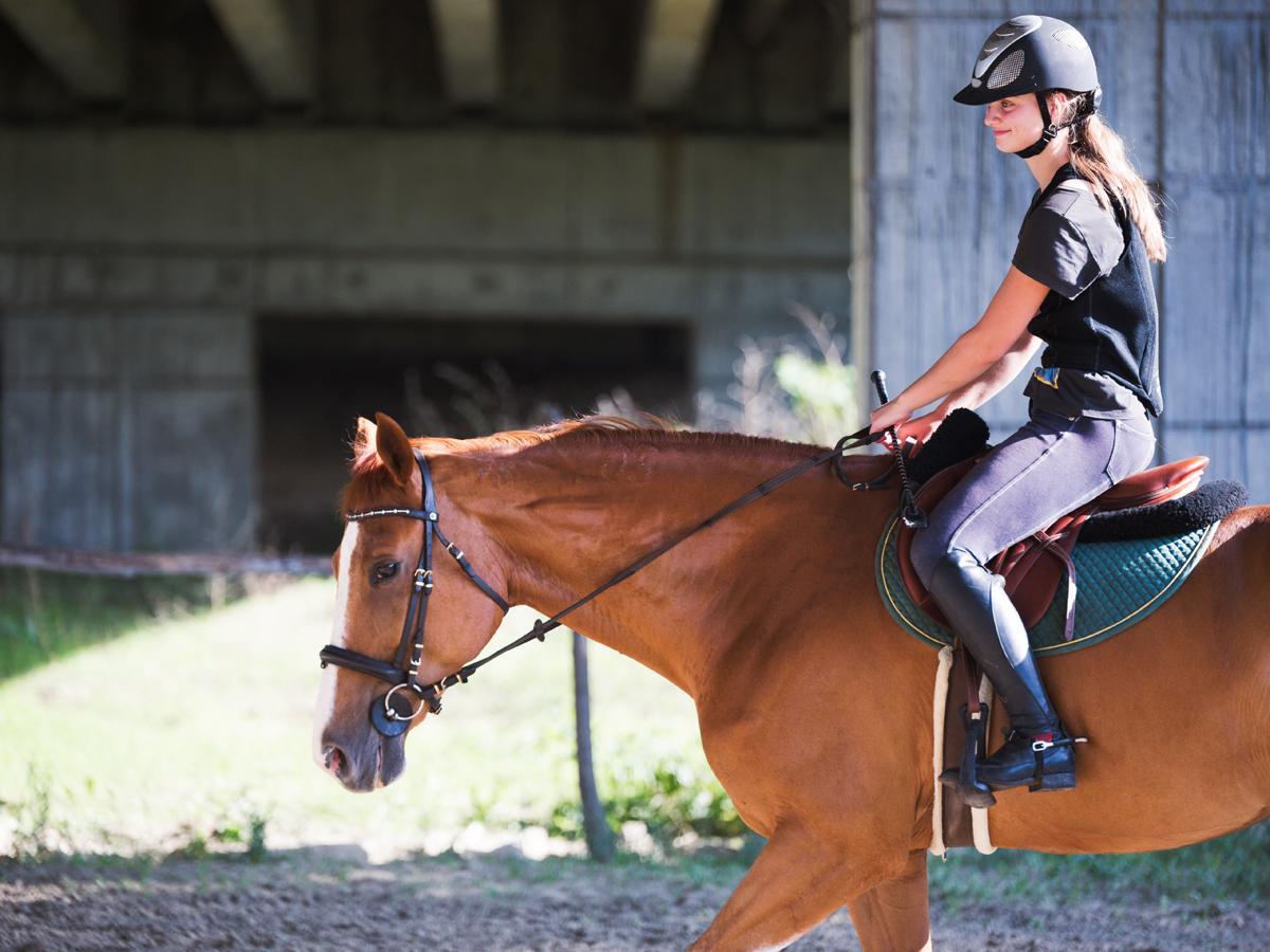 buty do jazdy konnej: oficerki