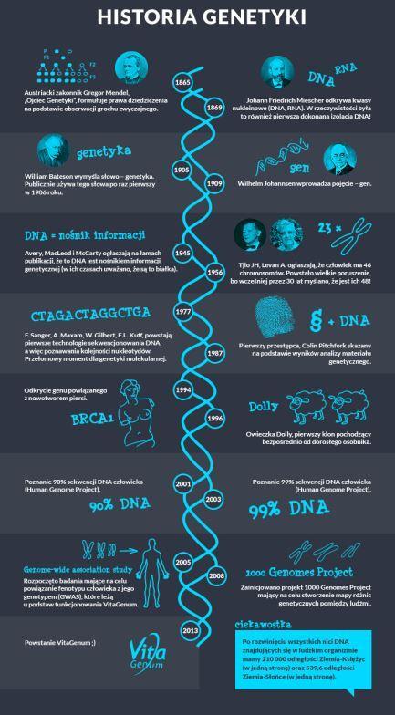Autor infografiki: VitaGenum