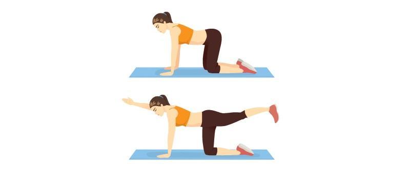 Ćwiczenia na brzuch po ciąży: wznosy rąk i nóg w klęku podpartym