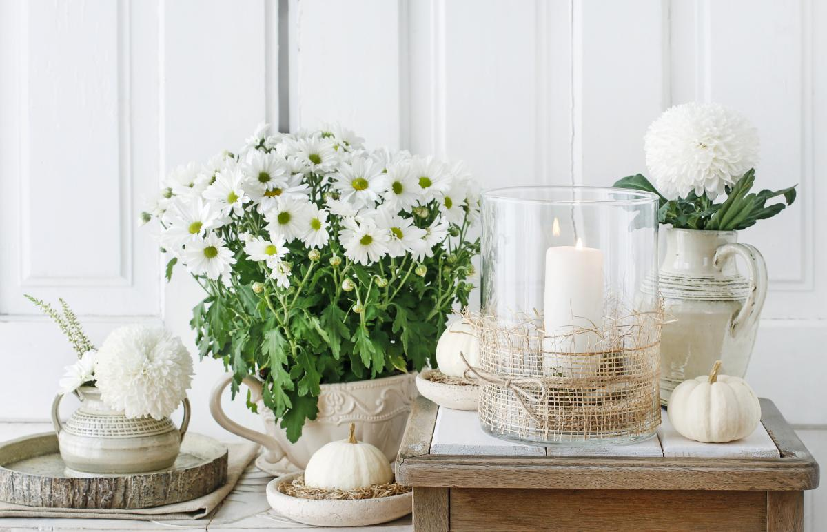 dekoracje z białej dyni