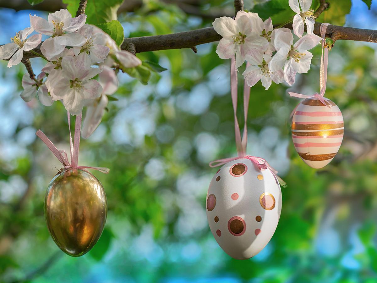 styropianowe jajka przed dom