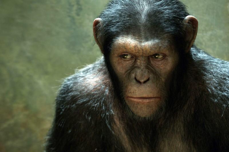 Geneza planety małp (reż. Rupert Wyatt) - zdjęcie