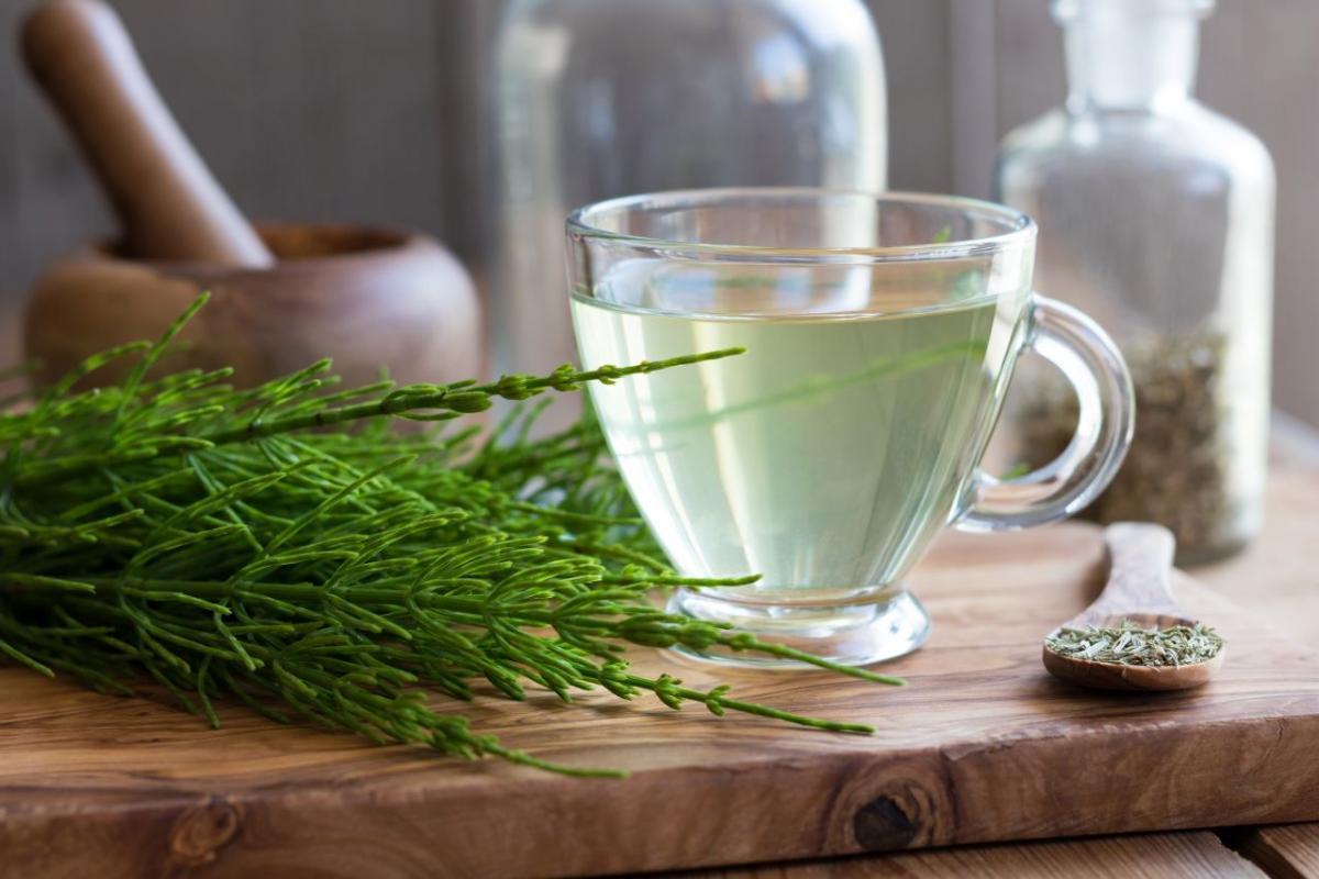 herbata ze skrzypu