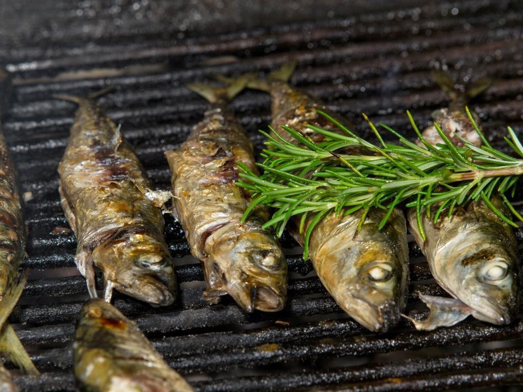 Jak grillować ryby?