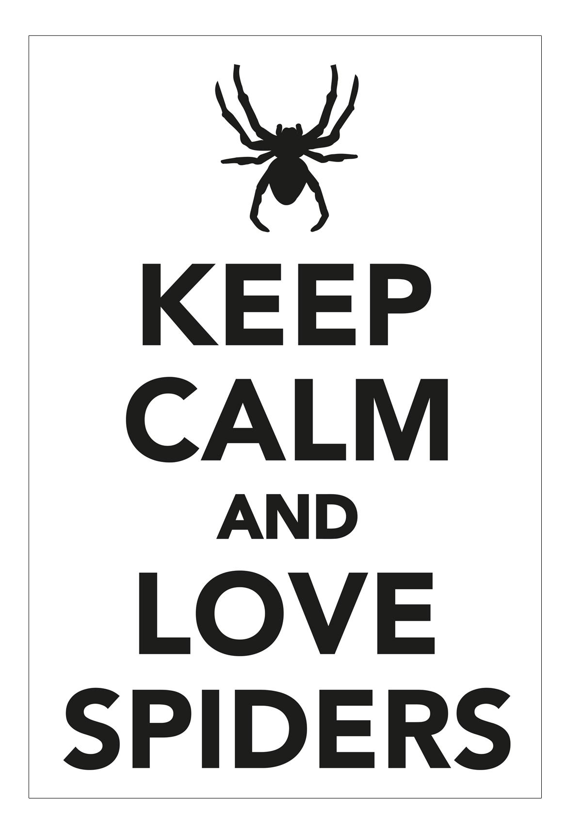 Keep calm and love spiders