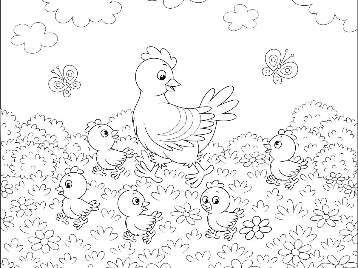 Kolorowanka kura i kurczaczki