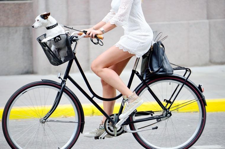 Kosze, sakwy i torby – przegląd dodatków na rower