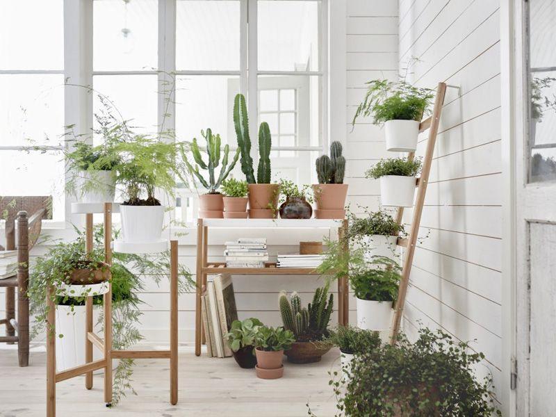 natura we wnętrzach, drewno we wnętrzach, naturalne wnętrze